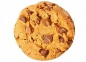 Legge sui Cookie, il tuo sito è a norma?